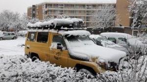 20171210 155846 - Kanarie in de sneeuw