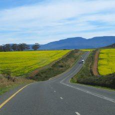 Dag 356-360 (17-21 aug.): Terug naar Kaapstad; het eindpunt
