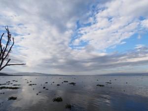 P1029219 - Naivasha meer