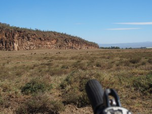P1039263 - Thomson's gazelles Hells Gate NP