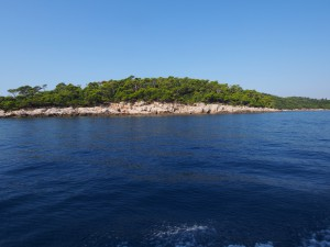 P9140822 - Lokrum Island