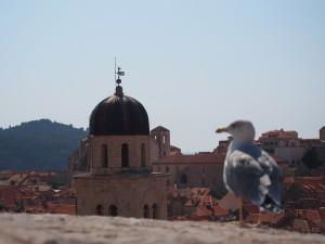 P9140927 - Dubrovnik
