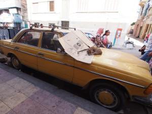 P9291841 - Straatbeeld Alexandrië