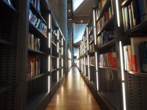 P9291893 - Bibliotheca Alexandrina