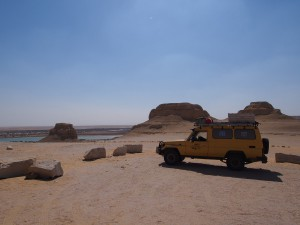PA173715 - Wadi Rayan