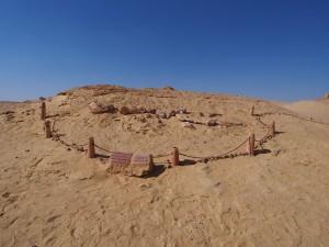 PA173749 - Wadi el-Hettan