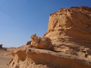 PA173760 - Wadi el-Hettan