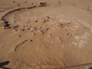 PA173784 - Wadi el-Hettan