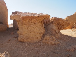 PA173805 - Wadi el-Hettan (fossiele mangrovewortels)