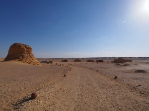 PA173816 - Wadi el-Hettan
