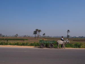 PA183877 - Wegbeeld omgeving Malawi