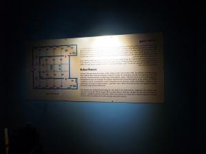 PA183887 - Malawi Museum
