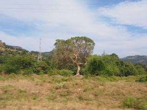 PB105485 - Onderweg naar Gorgora