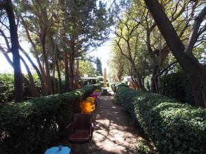 PB176396 - Azene Park