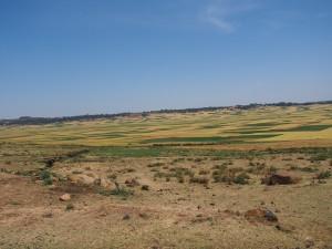 PB236730 - Onderweg naar Addis Abeba