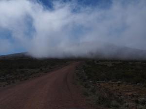 PB297474 - Bale Mountains NP