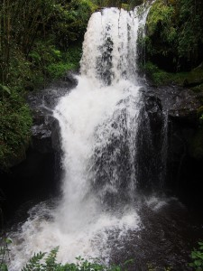 PB297525 - Waterval Rira rivier in Bale Mountains NP