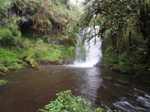 PB297529 - Waterval Rira rivier in Bale Mountains NP