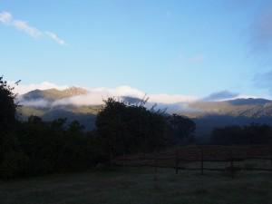 PB307544 - Bale Mountains NP
