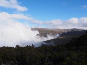 PB307549 - Bale Mountains NP