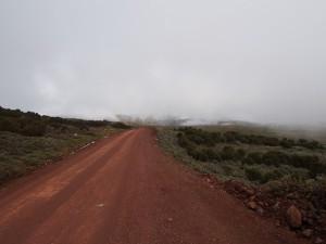 PB307617 - Bale Mountains NP
