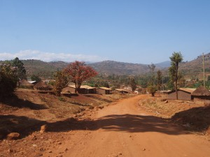 P1099712 - Eerste indrukken Uganda