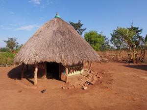 P1210710 - Village walk bij Nyero rotstekeningen