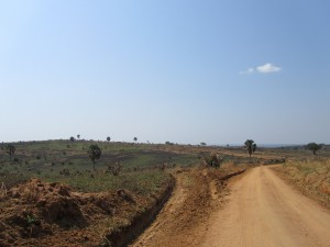 IMG 4207 - Murchison Falls NP