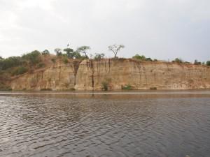 P1271569 - Nestmuur Murchison Falls NP