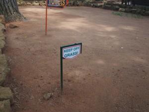 P1301811 - Welk gras Entebbe dierentuin