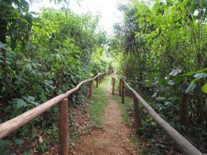 P2072137 - Buhoma Community Camp