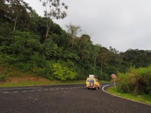 P2142497 - Rijden door Nyungwe Forest NP