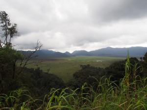 P2142513 - Uitzicht Nyungwe Forest NP