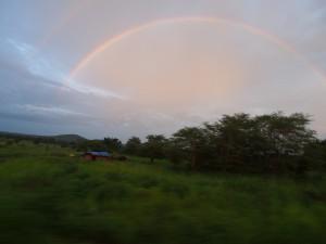 P2233041 - Regenboog onderweg naar Kitalike