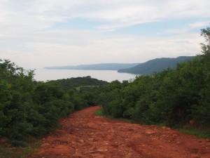 P2243137 - Weg naar Tanganyika meer