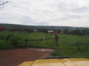 P2263188 - De echte poort naar Kalambo Falls