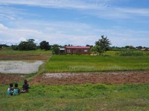 P3023500 - Eerste indrukken Malawi