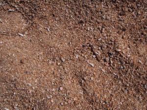 P3033574 - Schelpenstrand Malawimeer