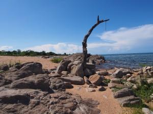 P3033577 - Strand Malawimeer