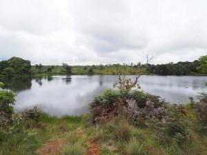 P3094418 - Kaulime meer, Nyika NP