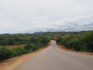 P4156240 - Onderweg naar Livingstone