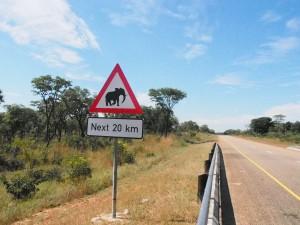 P4206805 - Bord overstekende olifanten onderweg naar Livingstone