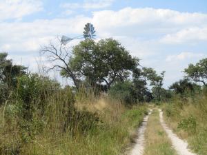 IMG 4366 - Windmolen Mudumu NP