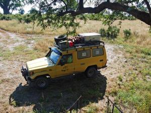 P4297535 - Kanarie met vol dak, Mudumu NP
