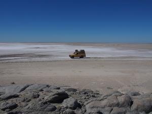 P5189174 - Kanarie op een bedje van zout