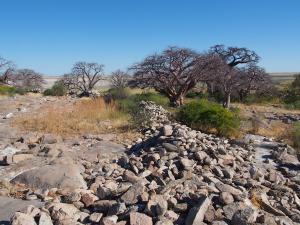 P5189294 - Antieke muren Kubu Island