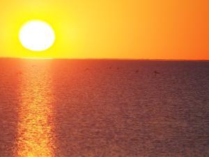 P5190044 - Zonsondergang bij Kukonje Island