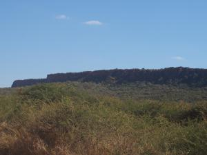 P6101279 - Waterberg Plateau