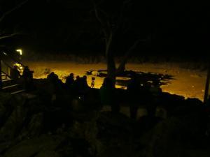 P6131714 - Publiek kijkt naar neushoorn Etosha NP