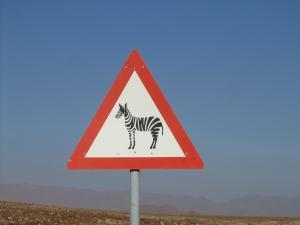 IMG 0511 - Overstekende zebras onderweg naar Aus